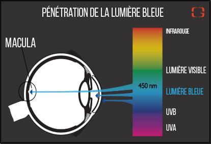 fa2eeba32783b4 La lumière bleue à haute intensité, qui pénètre plus loin dans l oeil est  dangereuse. Présente en grande quantité dans les LED, c est elle qu il faut  ...